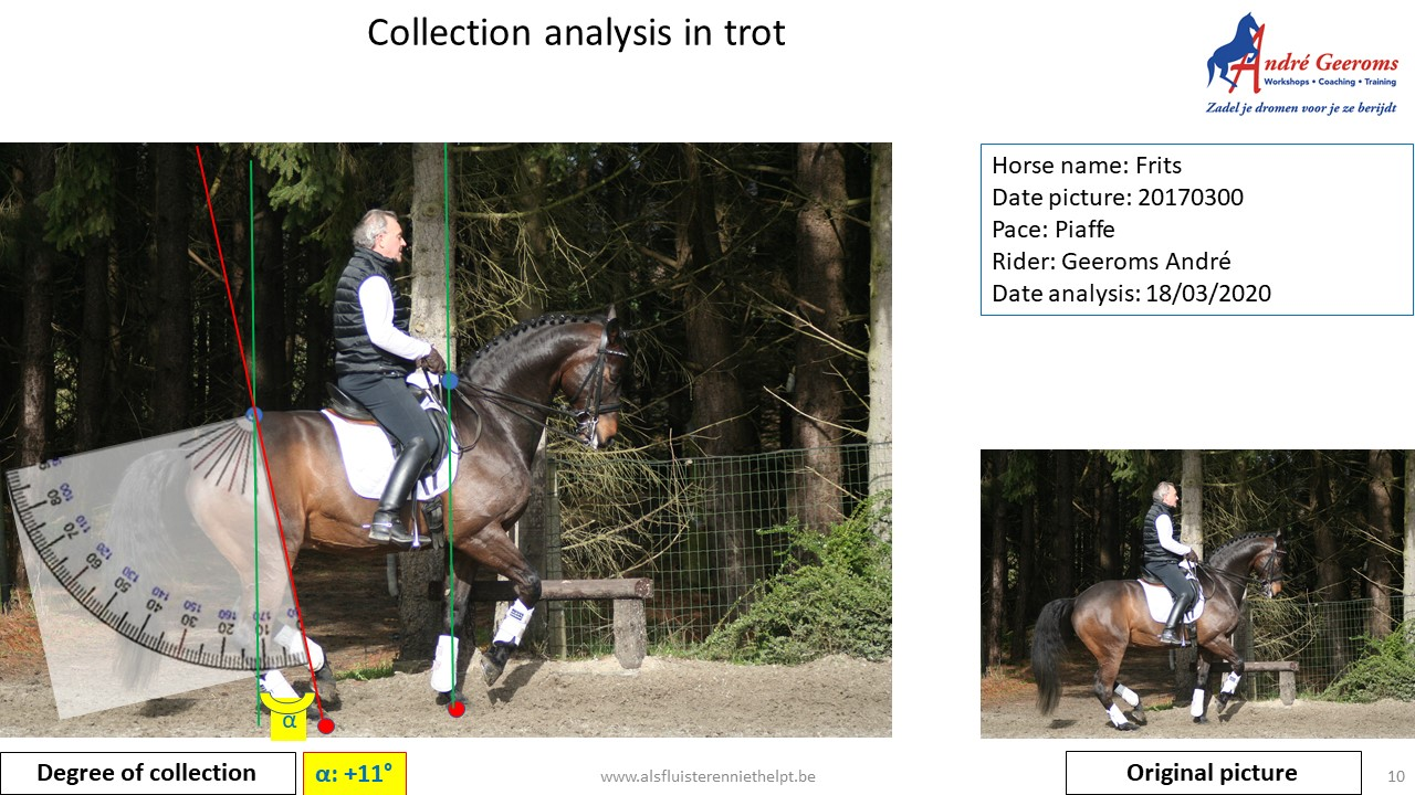 Analyse form for collection